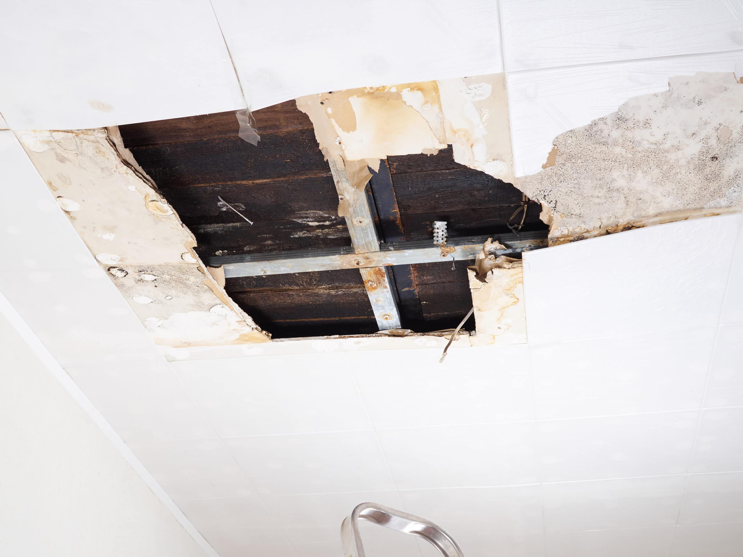 What are the Signs of Roof Water Damage