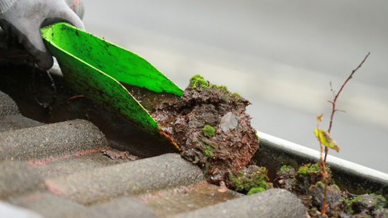 how-to-properly-clean-out-rain-gutters-on-your-home