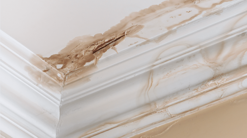 where-to-look-for-water-damage