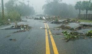 Property Damage: How To Spot Wind Damage?