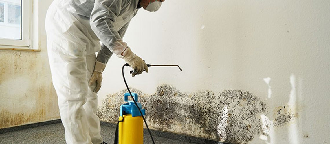 3-Reasons-Why-DIY-Mold-Removal-is-Dangerous