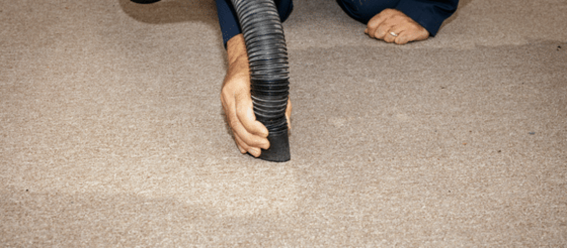water-damaged-carpet_-how-to-cleanup